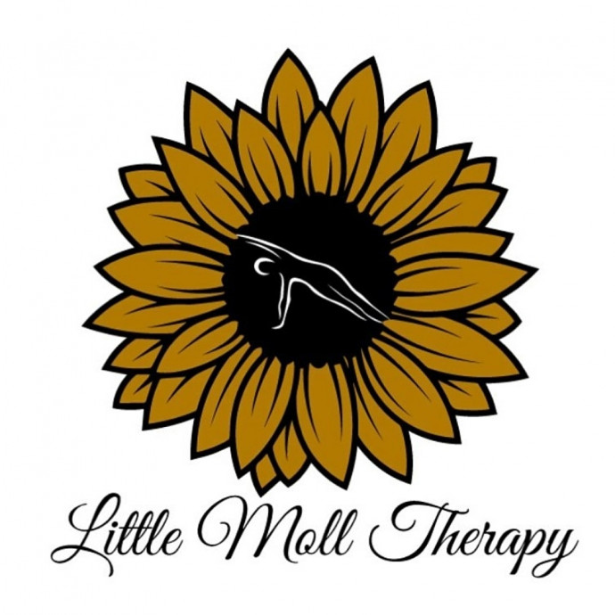 Soft Tissue Therapy Starting Monday 7th December